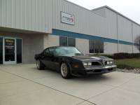 Firebird/Trans Am - 67-81 Firebird/Trans Am